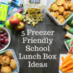 5 Freezer Friendly Lunch Box Ideas for Back to School