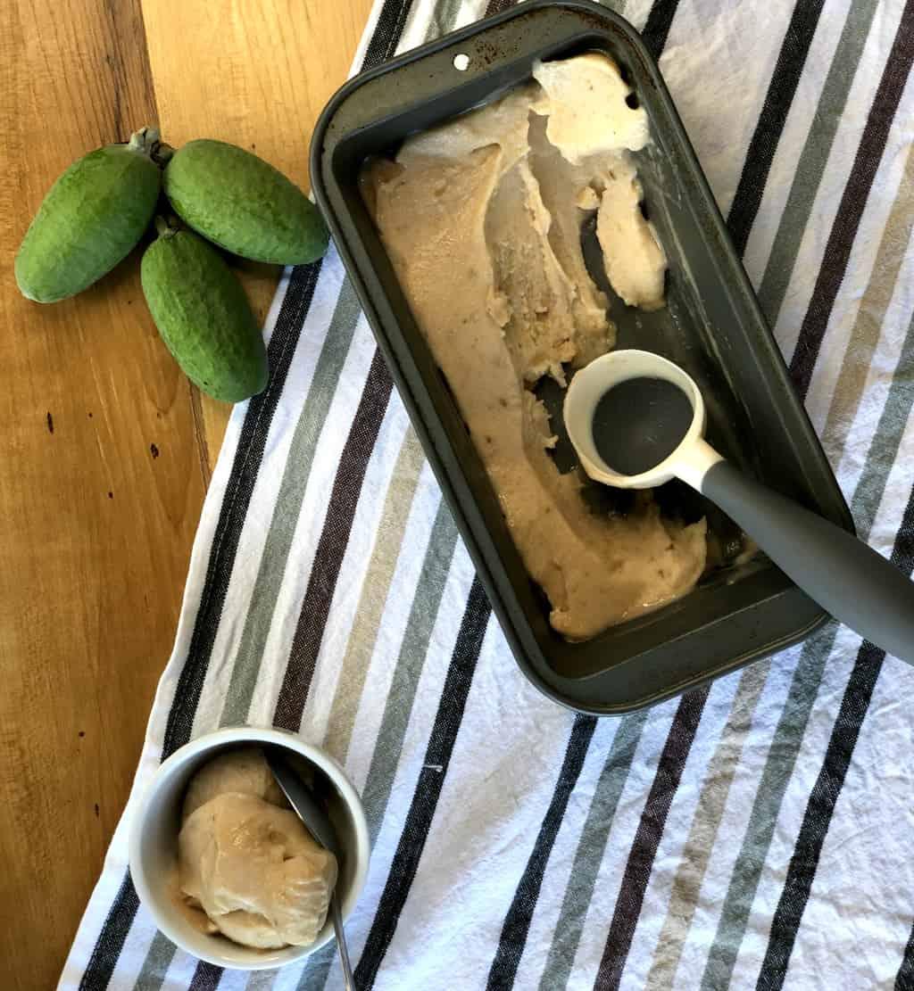 Frozen Fruit Ice Cream Sorbet