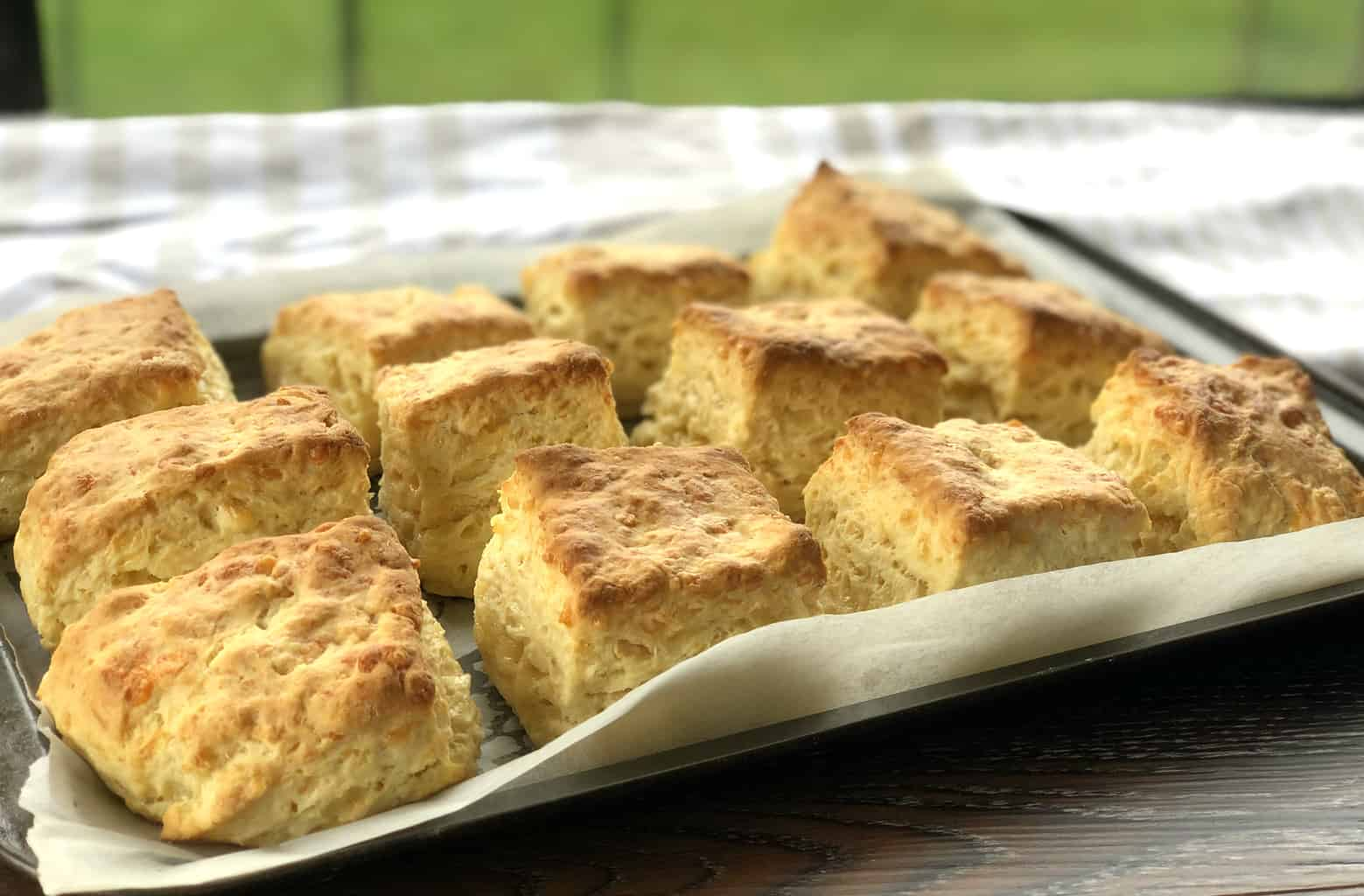 Tray of freshly baked warm cheese scones